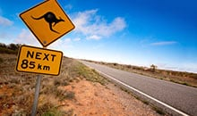 2 Day Australian High Country Tour; Melbourne to Sydney